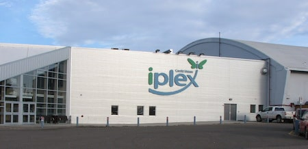 The Credit Union i-plex will host the world's best women's curling teams in 2016.